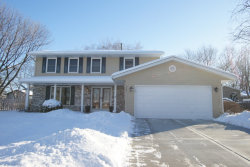 Photo of 867 Deerpath Court, HOFFMAN ESTATES, IL 60169 (MLS # 09856252)