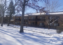 Photo of DOWNERS GROVE, IL 60516 (MLS # 09856935)