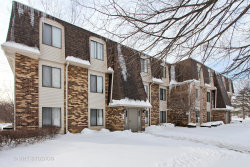 Photo of 234 W Court Of Shorewood, Unit Number 3B, VERNON HILLS, IL 60061 (MLS # 09858274)