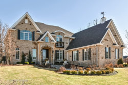 Photo of 14425 Deer Haven Lane, ORLAND PARK, IL 60467 (MLS # 09858306)
