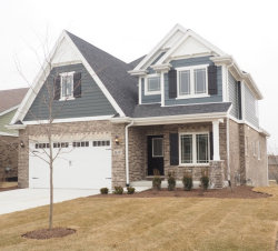 Photo of 16337 Emerson Drive, ORLAND PARK, IL 60467 (MLS # 09859659)
