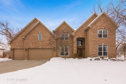 Photo of 1676 Pondview Drive, HOFFMAN ESTATES, IL 60192 (MLS # 09860187)