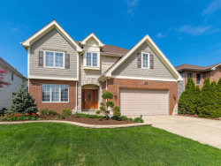 Photo of 204 Kacie Court, WESTMONT, IL 60559 (MLS # 09860390)
