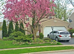 Photo of 463 Glenmore Place, ROSELLE, IL 60172 (MLS # 09861450)