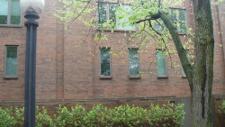Photo of 1908 N Mohawk Street, Unit Number 4, CHICAGO, IL 60614 (MLS # 09861520)
