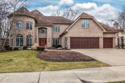 Photo of 905 Watercress Drive, NAPERVILLE, IL 60540 (MLS # 09863933)
