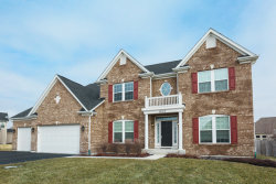 Photo of 13113 Wildwood Place, PLAINFIELD, IL 60585 (MLS # 09864354)