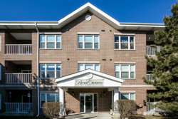 Photo of 10 N Gilbert Street, Unit Number 315, SOUTH ELGIN, IL 60177 (MLS # 09876047)