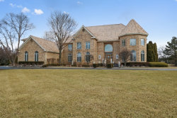 Photo of 13 Pentwater Drive, SOUTH BARRINGTON, IL 60010 (MLS # 09883704)