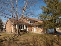 Photo of 301 Vista Drive, BOLINGBROOK, IL 60490 (MLS # 09884646)