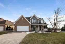 Photo of 253 Hawk Hollow Drive, BARTLETT, IL 60103 (MLS # 09885544)