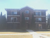 Photo of 9847 Treetop Drive, Unit Number 2E, ORLAND PARK, IL 60462 (MLS # 09885982)