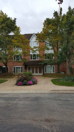 Photo of 207 Rivershire Lane, Unit Number 306, LINCOLNSHIRE, IL 60069 (MLS # 09887265)