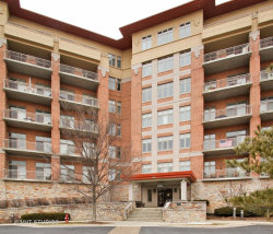 Photo of 100 Prairie Park Drive, Unit Number 512, WHEELING, IL 60090 (MLS # 09888503)