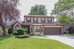 Photo of 221 Schreiber Avenue, ROSELLE, IL 60172 (MLS # 09891549)
