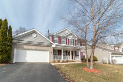 Photo of 528 N Overlook Trail, ROUND LAKE, IL 60073 (MLS # 09896151)
