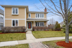 Photo of 316 Donnelley Place, VERNON HILLS, IL 60061 (MLS # 09896210)