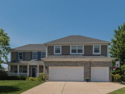 Photo of 8 Birchwood Court, LAKE IN THE HILLS, IL 60156 (MLS # 09902799)