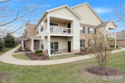 Photo of 4401 Timber Ridge Court, Unit Number 4401, JOLIET, IL 60431 (MLS # 09911803)