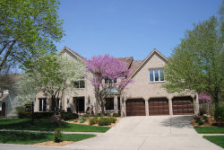 Photo of 1005 Sheppey Court, NAPERVILLE, IL 60565 (MLS # 09914147)