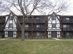 Photo of 6 Timber Lane, Unit Number 13, VERNON HILLS, IL 60061 (MLS # 09915177)