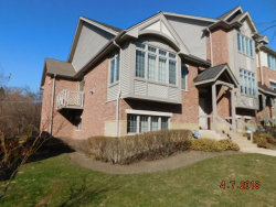 Photo of 60 E Hattendorf Avenue, Unit Number 0, ROSELLE, IL 60172 (MLS # 09915223)