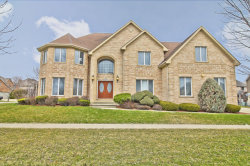 Photo of 1160 Blue Heron Way, ROSELLE, IL 60172 (MLS # 09916862)