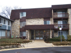 Photo of 922 E Old Willow Road, Unit Number 304, PROSPECT HEIGHTS, IL 60070 (MLS # 09917498)