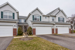 Photo of 1336 Filly Lane, Unit Number 1336, BARTLETT, IL 60103 (MLS # 09918947)