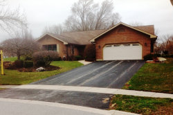 Photo of 118 Golf View Circle, PROSPECT HEIGHTS, IL 60070 (MLS # 09919357)