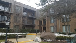 Photo of 3 Court Of Harborside, Unit Number 308, NORTHBROOK, IL 60062 (MLS # 09921055)
