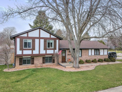 Photo of 5202 Abbey Drive, MCHENRY, IL 60050 (MLS # 09921709)