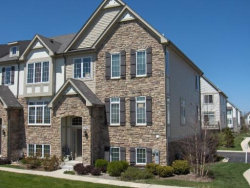 Photo of 273 Fitzgerald Circle, CAROL STREAM, IL 60188 (MLS # 09925994)