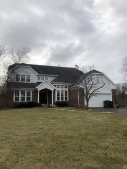 Photo of 29070 Old Rockland Road, LIBERTYVILLE, IL 60048 (MLS # 09942700)