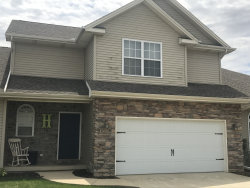 Photo of 1703 Timber Wolf Lane, Unit Number B, MAHOMET, IL 61853 (MLS # 09945026)