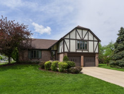 Photo of 1084 Independence Drive, BARTLETT, IL 60103 (MLS # 09953067)