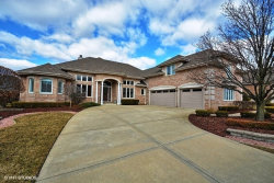 Photo of 10916 White Deer Circle, ORLAND PARK, IL 60467 (MLS # 09953595)