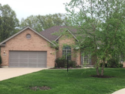 Photo of 26553 S Overland Drive, CHANNAHON, IL 60410 (MLS # 09955195)