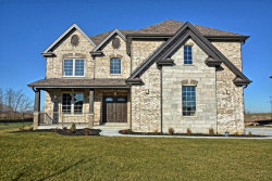 Photo of 16521 Willow Drive, LEMONT, IL 60439 (MLS # 09955265)