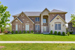Photo of 16484 Willow Drive, LEMONT, IL 60439 (MLS # 09955999)