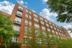 Photo of 1735 N Paulina Street, Unit Number 309, CHICAGO, IL 60622 (MLS # 09957445)