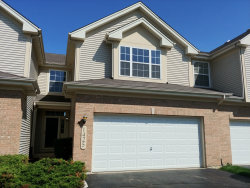 Photo of 1425 Quincy Bridge Court, BARTLETT, IL 60103 (MLS # 09962742)