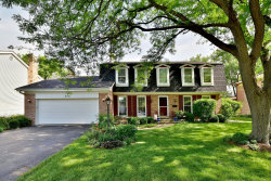 Photo of 206 White Fawn Trail, DOWNERS GROVE, IL 60516 (MLS # 09986016)
