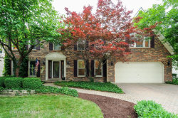 Photo of 1058 Augustana Drive, NAPERVILLE, IL 60565 (MLS # 09992837)