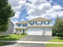 Photo of 782 Barclay Drive, BOLINGBROOK, IL 60440 (MLS # 09995511)