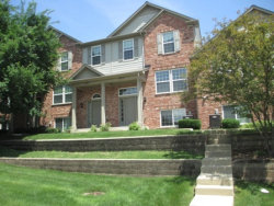 Photo of 107 Driscoll Lane, Unit Number 2, WOOD DALE, IL 60191 (MLS # 09997078)