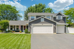 Photo of 306 Terrace Drive, BARTLETT, IL 60103 (MLS # 10003098)