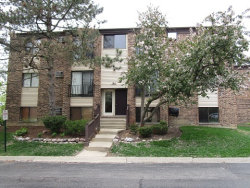 Photo of 164 Dunteman Drive, Unit Number 102, GLENDALE HEIGHTS, IL 60139 (MLS # 10011185)