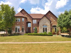 Photo of 1570 Little Willow Road, MORRIS, IL 60450 (MLS # 10016553)