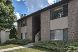 Photo of 1111 Kane Street, Unit Number 1111, SOUTH ELGIN, IL 60177 (MLS # 10021821)
